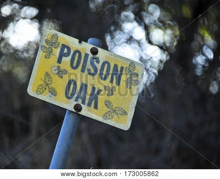 This is a photo of a poison oak sign.
