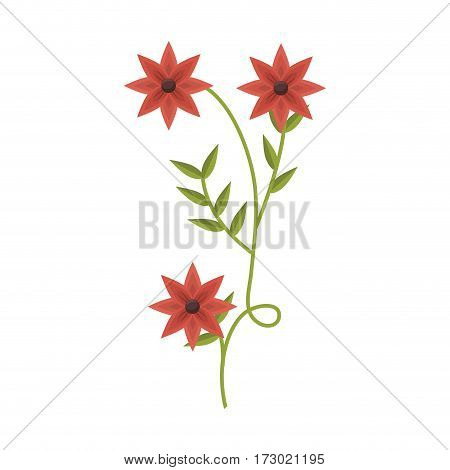 plant with ramification and red flowers vector illustration