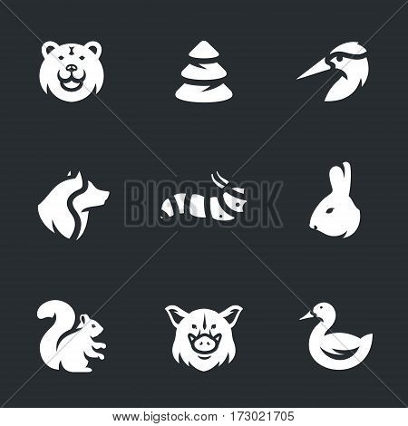 Bear, Pine, woodpecker, wolf, caterpillar, rabbit, squirrel, wild boar, duck.