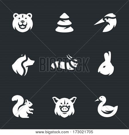 Bear, Pine, woodpecker, wolf, caterpillar, rabbit, squirrel, wild boar, duck.
