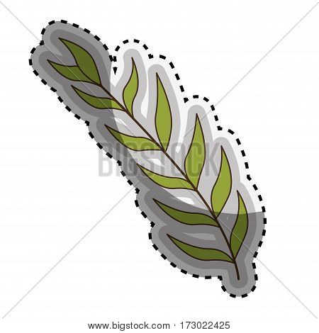 sticker green oval leaves with ramifications vector illustration