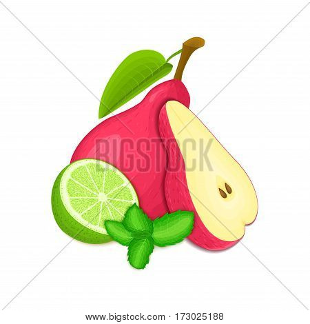 Vector composition of a few red pears citrus lime and mint leaves. Red pear fruits and tropical lime. Group of tasty ripe fruit with pepper mint leaf design of juice breakfast healthy vegan food.