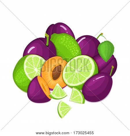 Composition of several plum and citrus lime fruit. Ripe vector plums and tropical limes fruits. Group of tasty fruits whole and slice for design packaging juice, cocktail, healthy food, vegan eat