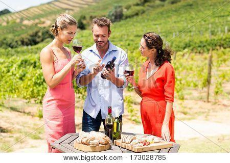 Happy friends having wine in the vineyard