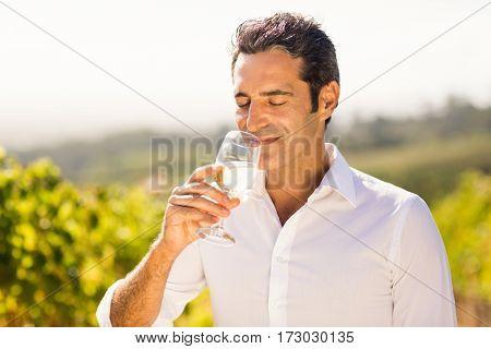 Male vintner smelling glass of wine in vineyard