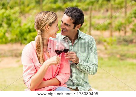 Happy couple toasting glasses of wine at vineyard
