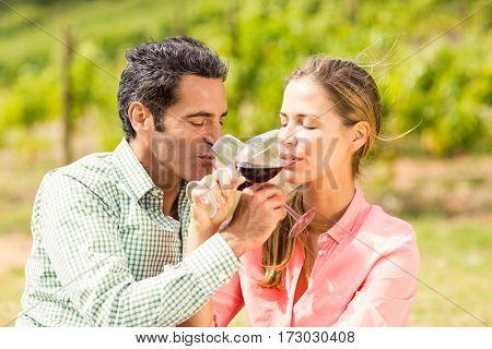 Happy couple having wine in vineyard
