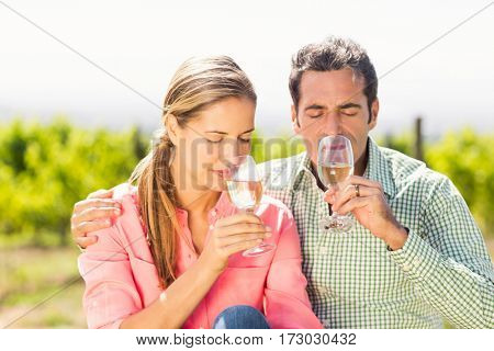 Happy couple smelling glasses of wine in vineyard