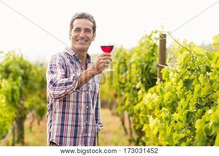 Portrait of smiling vintner holding glass of wine in vineyard