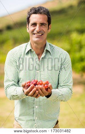 Portrait of smiling vintner holding grapes in vineyard