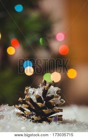 Close-up of pine cone on snow during christmas time