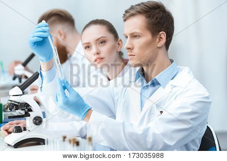 Young man and woman chemists looking at test tube in laboratory