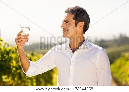 Smiling male vintner looking at a glass of wine in vineyard