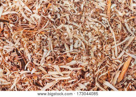 brown wood shavings in a carpenter's workshop