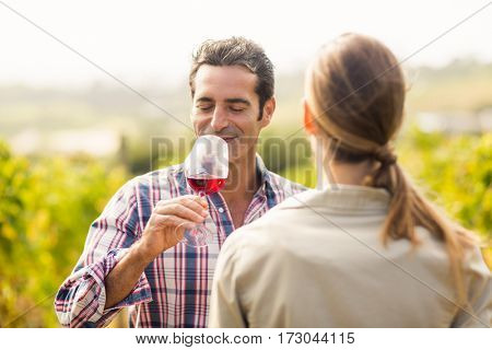 Happy couple having wine in vineyard