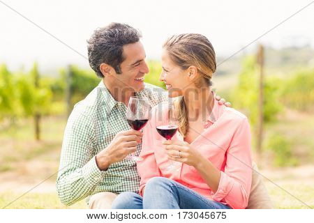 Happy couple toasting glasses of wine in vineyard