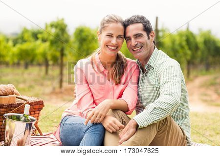 Portrait of happy couple relaxing on a blanket in vineyard