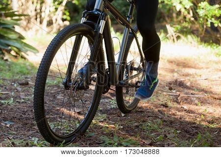 Low section of male mountain biker riding bicycle in forest