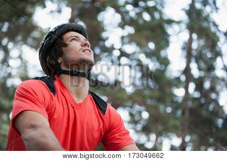 Male mountain biker in the forest on a sunny day