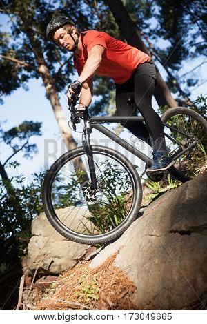 Male mountain biker riding bicycle in the forest on a sunny day