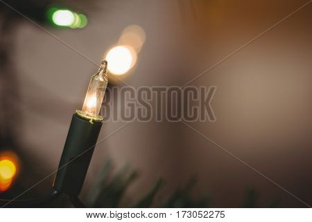 Close-up of fairy light during christmas time