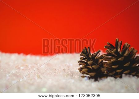 Two pine cone on snow during christmas time