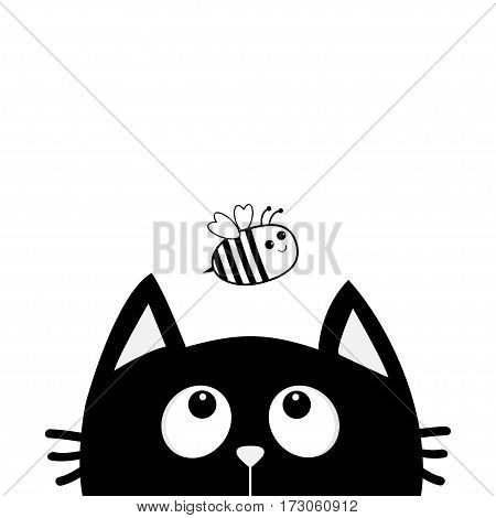 Black cat looking up to bee bumblebee honeybee insect. Cute cartoon character. Kawaii animal. Greeting card. Flat design style. White background. Isolated. Vector illustration
