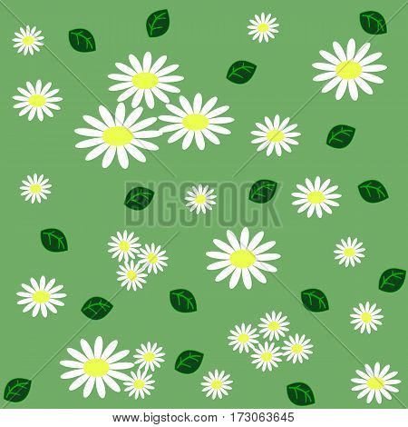 Floral seamless pattern with chamomiles and green leaves on light green background. Vector illustration
