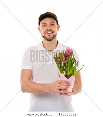 Male florist holding house plant isolated on white background