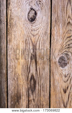 Different wood structure, blank template, abstract background. Studio Photo