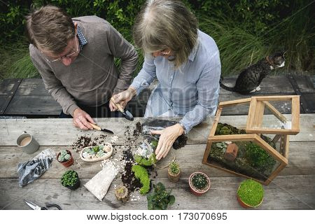 Senior couple plant tree in garden
