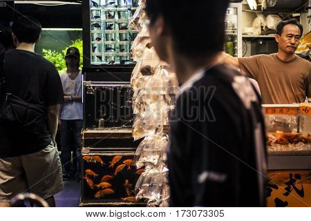 Goldfish Market In Hong Kong