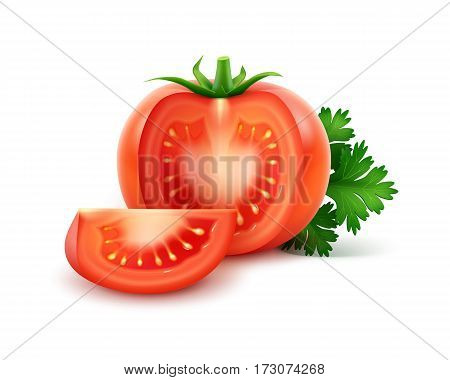Vector Big Ripe Red Fresh Cut Whole Tomatoes with Parsley Close up Isolated on White Background