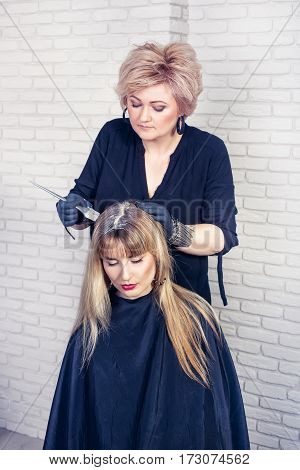 Hair salon. Hair coloring in process. Female hairdresser applying color to customer at hair salon. Portrait of professional hairdresser middle aged woman coloring hair