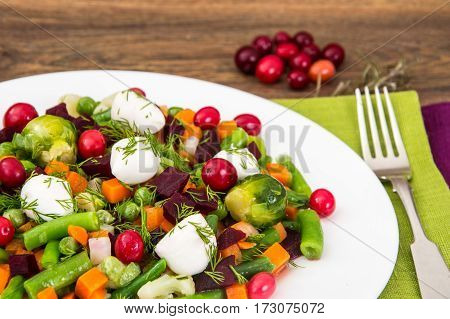 Boiled vegetables with cranberries and mozzarella on white plate. Studio Photo