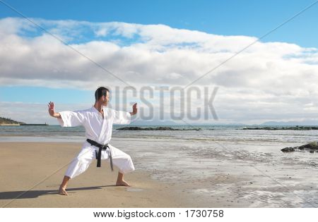 Young adult man with black belt practicing a Kata on the beach on a sunny day poster