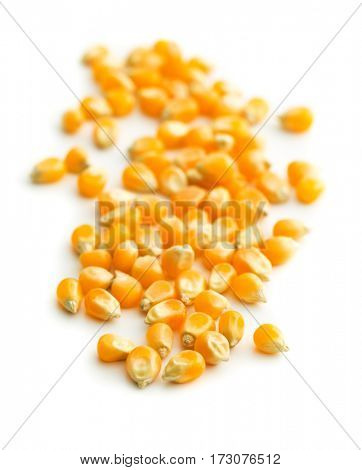 The corn seeds isolated on white background.