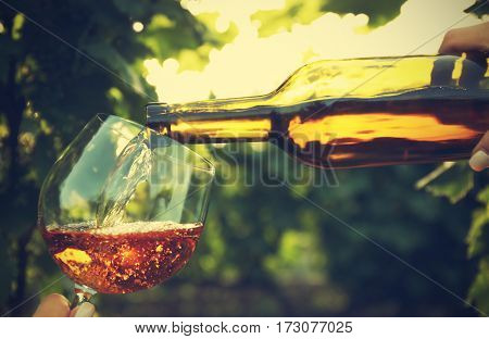 Pouring wine into glass on blurred nature background