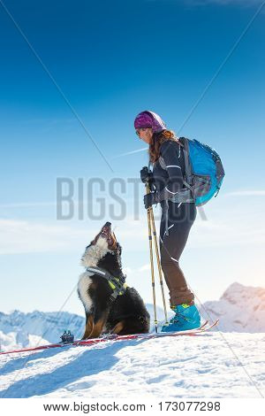 Girl On Top Of A Mountain In Winter With Skiing And Its Bernese Dog