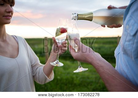 Couple toasting champagne in field on a sunny day