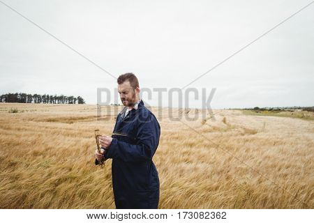 Farmer checking his crops in the field on a sunny day