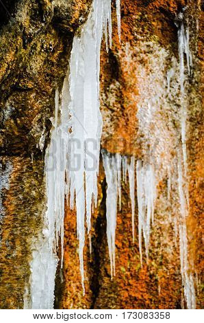 Frozen icicles at Shoshone Falls National Forest