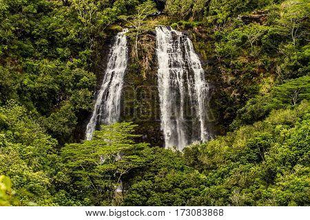 Hawaiian Waterfall