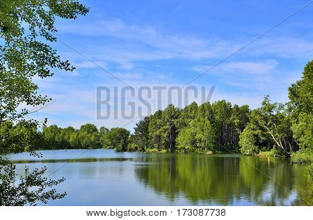 Beautiful peaceful summer scenery on lakeside with reflection and tree branches at foreground.
