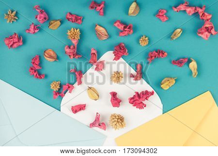 Three envelops and colorful dried flowers, plants on blue background. Top view, flat lay
