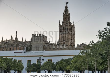 Sevilla (Andalucia Spain): the Giralda belfry of the historic cathedral at evening
