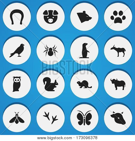 Set Of 16 Editable Nature Icons. Includes Symbols Such As Bull, Talisman, Honey And More. Can Be Used For Web, Mobile, UI And Infographic Design.