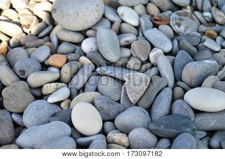 Beautiful multi-colored pebbles on the beach sea