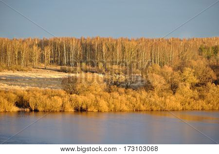 Spring water landscape - birds eye view of spring forest in early spring time. Beautiful spring forest background with row of spring forest trees near the river lit by sunset light