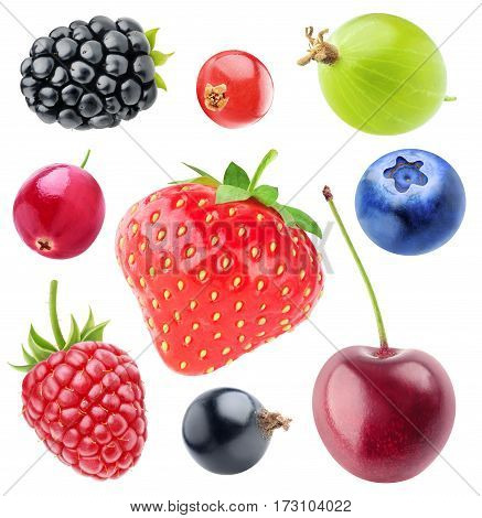 Various berries collection. Strawberry blackberry cranberry raspberry black currant cherry blueberry gooseberry and red currant isolated on white background with clipping path